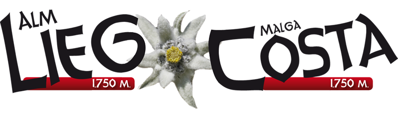 cropped-logo-lieg.png